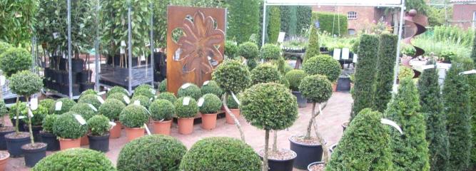 Evergreen Gartenbau gartenbau purk startseite